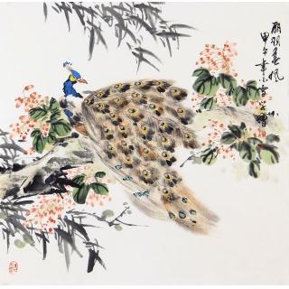 孔雀图 王学增四尺斗方写意花鸟画《丽羽春风》