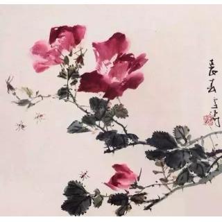 国画大师王雪涛花鸟画作品《牡丹》