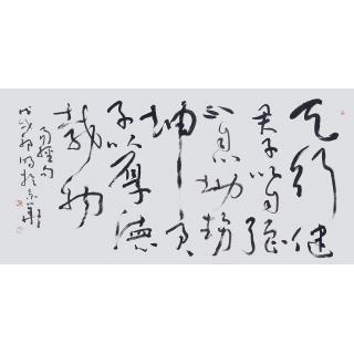 易经名言 郭明四尺横幅书法作品《天行健》